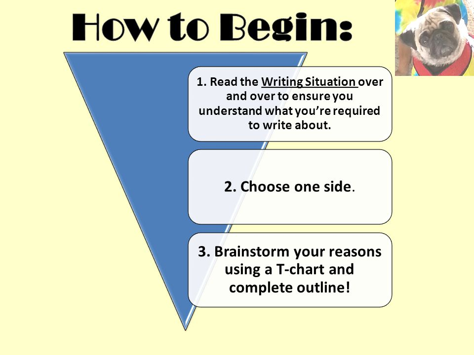 writing a persuasive essay ppt video online  brainstorm your reasons using a t chart and complete outline