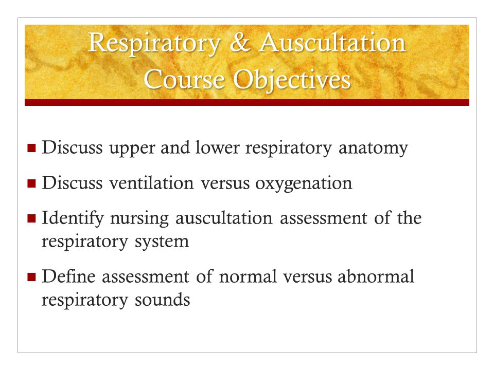 chapter 26 nursing assessment respiratory system Undergraduate nursing in physical and health assessment, the text begins with introductory concepts, such as overall health assessment, conducting a health interview and health history, as well as documentation the second half is organized by body systems, and each chapter reviews anatomy and.
