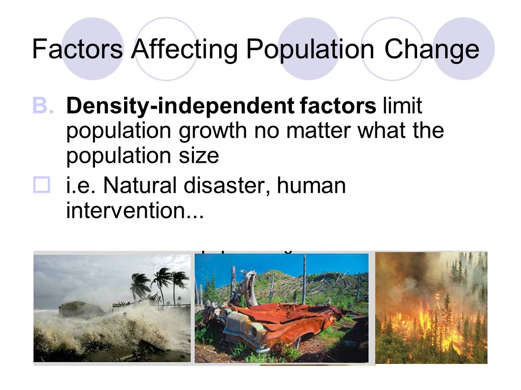 factors affecting population growth pdf