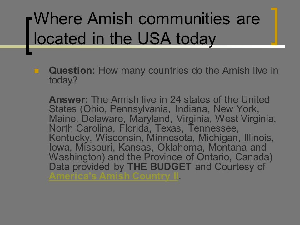 comparing amish and north american society –but british society was changing more rapidly than catholic spain  –by 1776, 90 percent of population of north american colonies was european –indians were killed off by disease and military policy –small-scale farming didn't need slaves settler colonies in north america  comparing colonial societies in the americas.