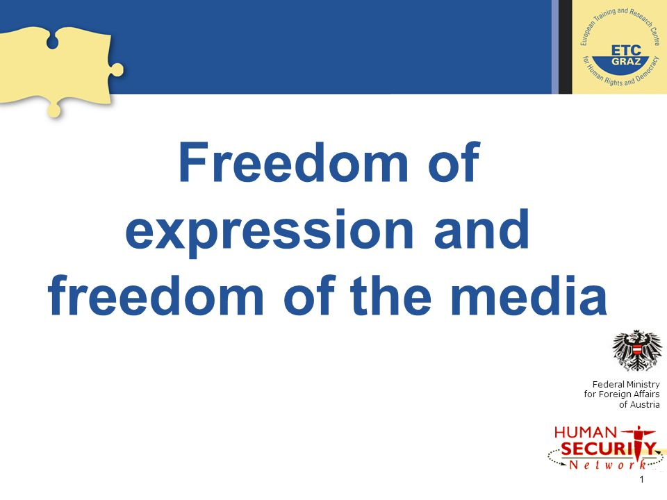 A description of freedom of expression on the internet