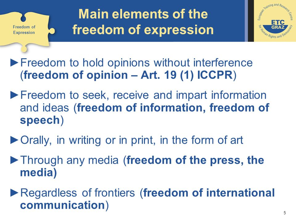 Elements Of Artistic Expression : Freedom of expression and the media ppt video
