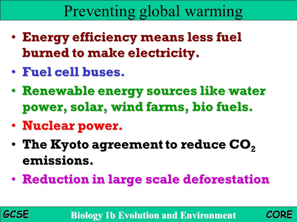 How To Prevent Global Warming Essay