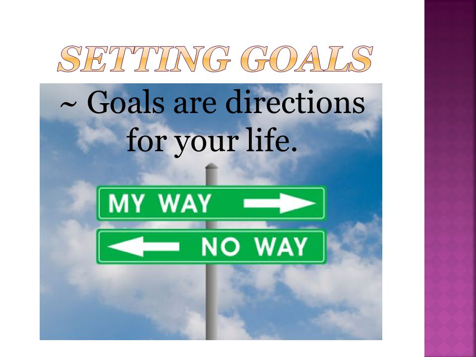 Setting Goals ~ Goals are directions for your life.
