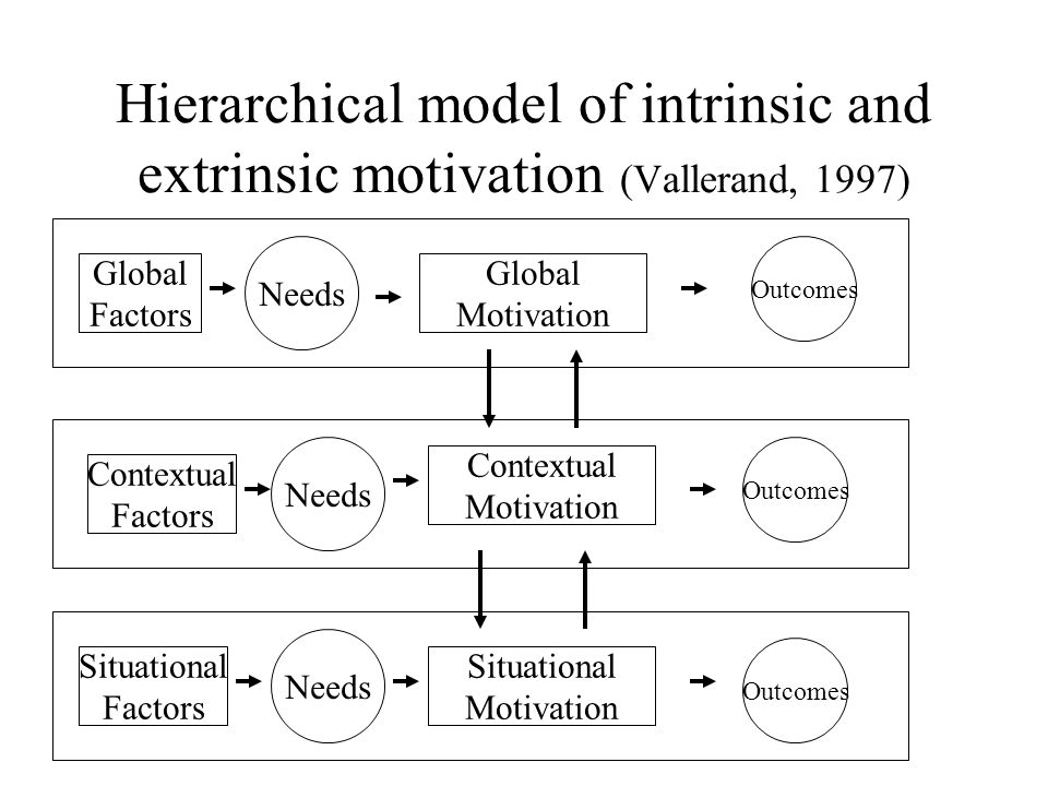 intrinsic and extrinsic motovation Motivation can be defined as a reason (or reasons) which leads an individual to act in a certain way the phenomenon of motivation isn't limited to just humans, and occurs in every organism living.