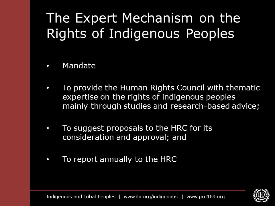 The Expert Mechanism on the Rights of Indigenous Peoples