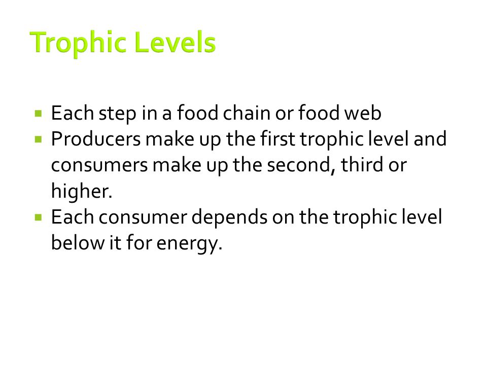 Trophic Levels Each step in a food chain or food web