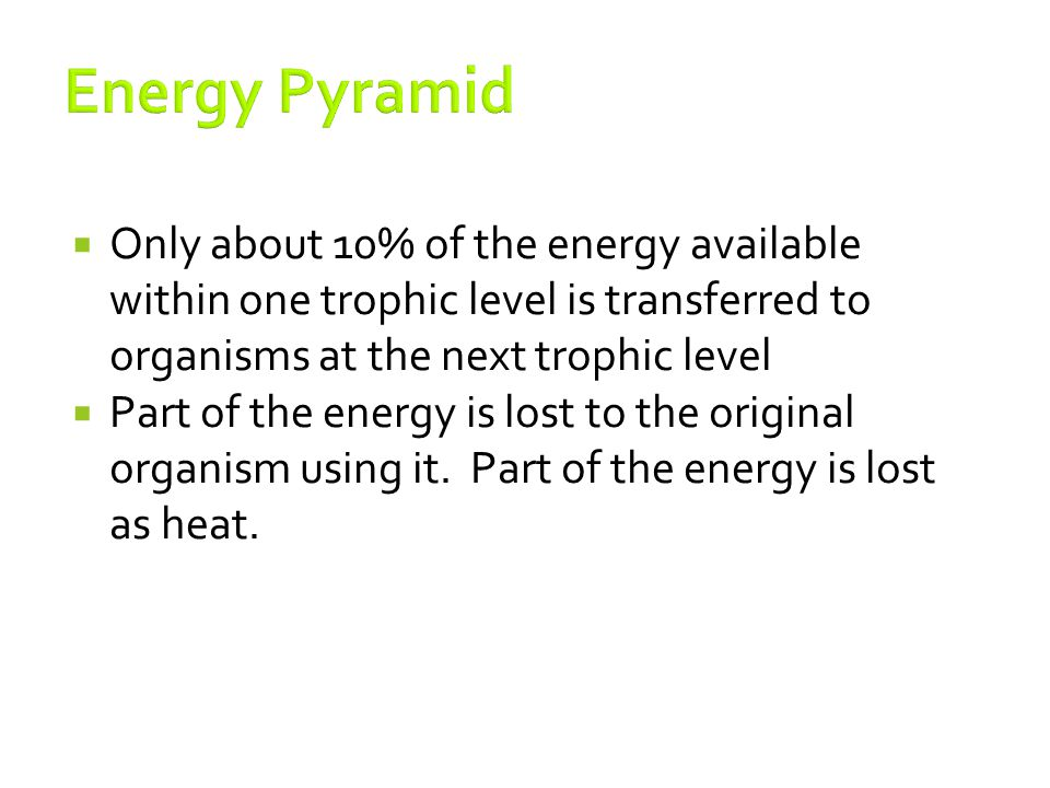 Energy Pyramid Only about 10% of the energy available within one trophic level is transferred to organisms at the next trophic level.