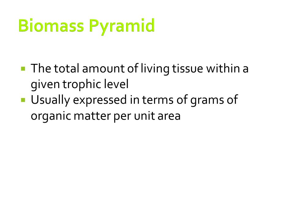 Biomass Pyramid The total amount of living tissue within a given trophic level.