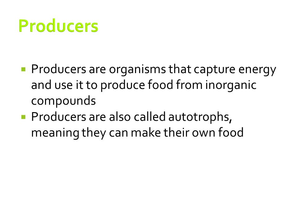 Producers Producers are organisms that capture energy and use it to produce food from inorganic compounds.