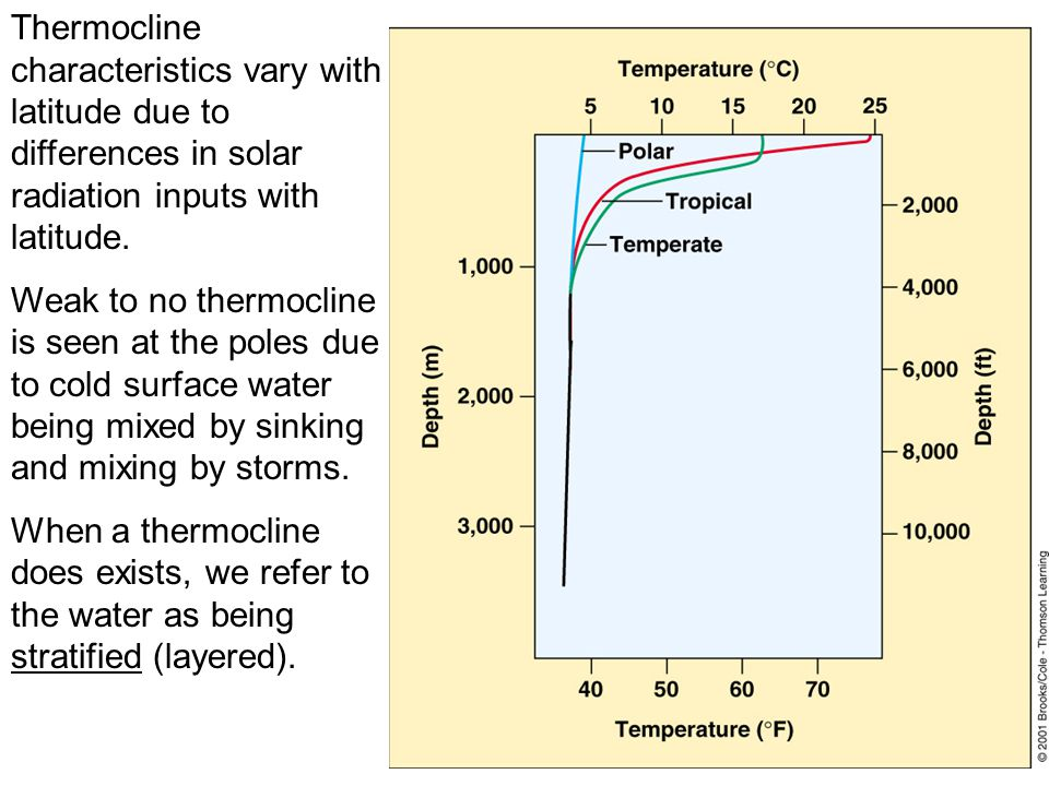 Thermocline characteristics vary with latitude due to differences in solar radiation inputs with latitude.