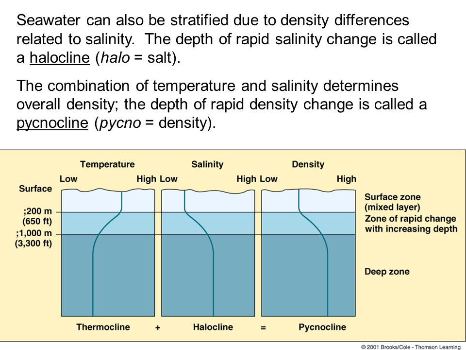 Seawater can also be stratified due to density differences related to salinity. The depth of rapid salinity change is called a halocline (halo = salt).