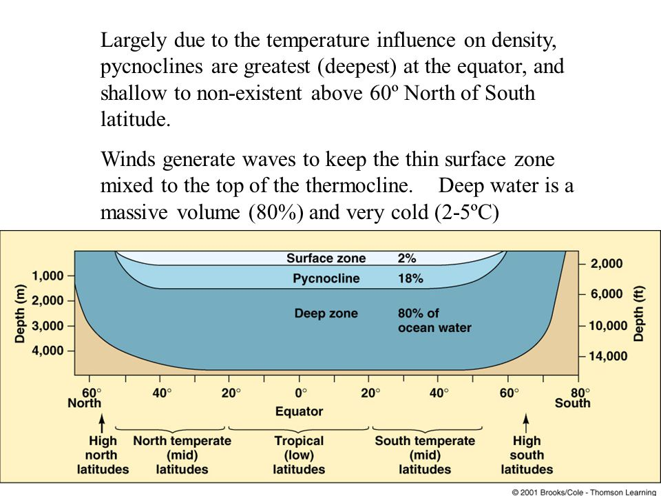Largely due to the temperature influence on density, pycnoclines are greatest (deepest) at the equator, and shallow to non-existent above 60º North of South latitude.