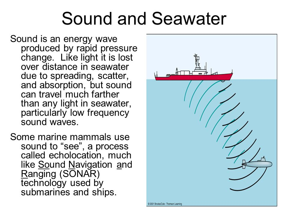 Sound and Seawater