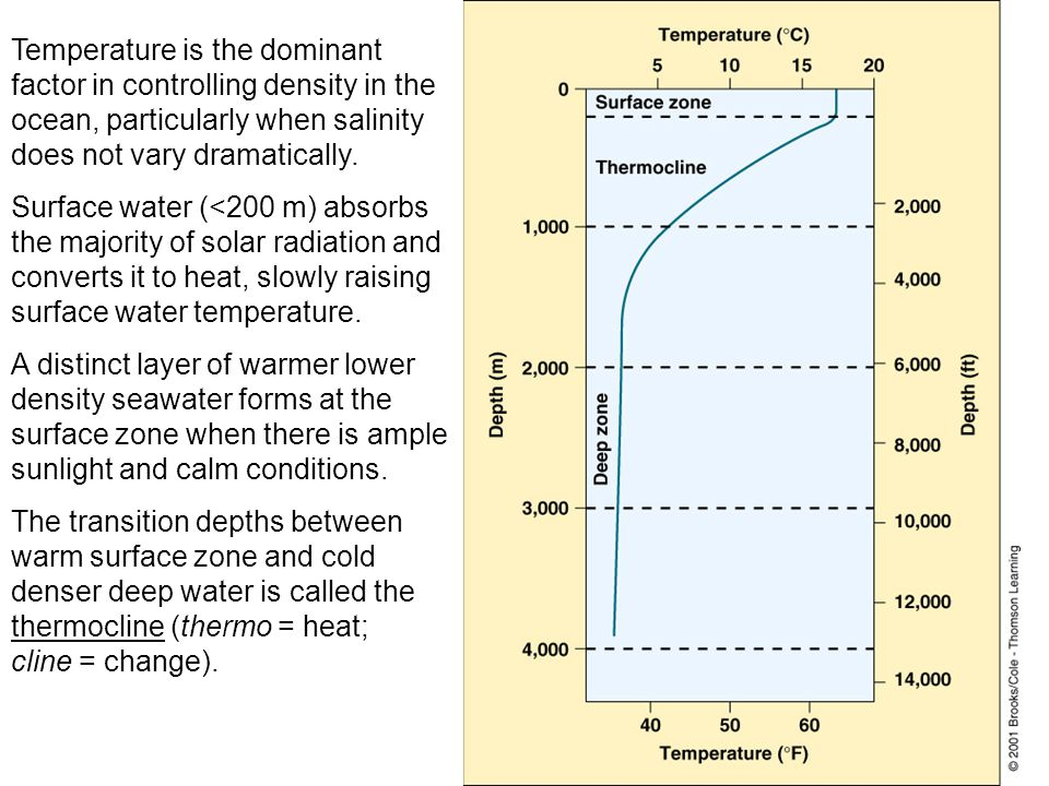 Temperature is the dominant factor in controlling density in the ocean, particularly when salinity does not vary dramatically.