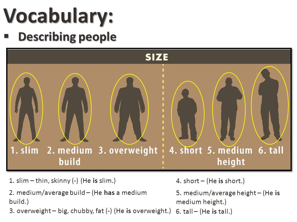 Vocabulary: Describing people 1. slim – thin, skinny (-) (He is slim.)