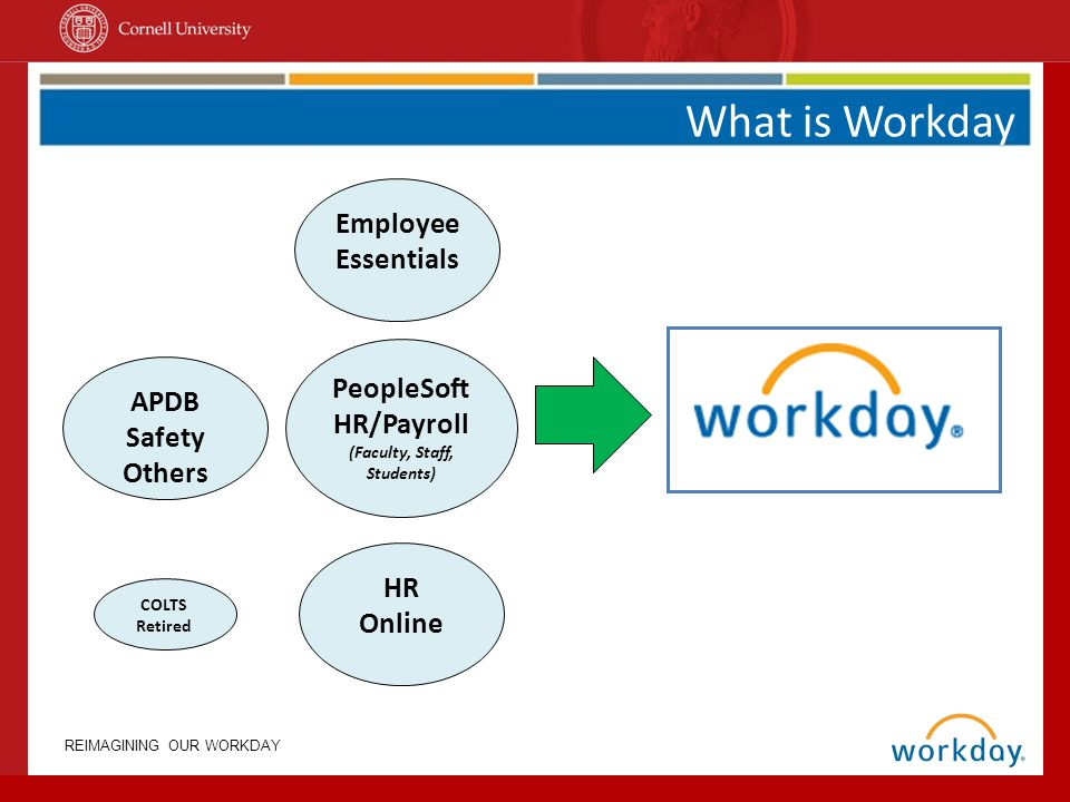 An Overview Of The Workday Project  Ppt Video Online Download. Best Masters Degrees In Business. Business Intelligence For Banks. What Ira Is Best For Me Interim Hr Consulting. Can Disputing A Credit Report Hurt. Www Lifeline Phone Service Hive Create Table. 1 800 General Now Car Insurance. Colleges And Universities In Houston Texas. Basement Waterproofing System