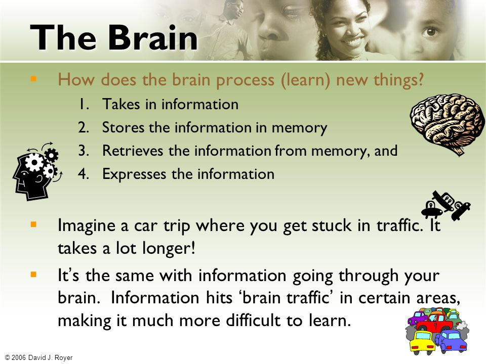 understanding how the brain process information and what affects it Given the ubiquity of google, is memory obsolete academic earth dares to ask, how is such easy access to information affecting our brains as we rely less and less on memory and more on technology.