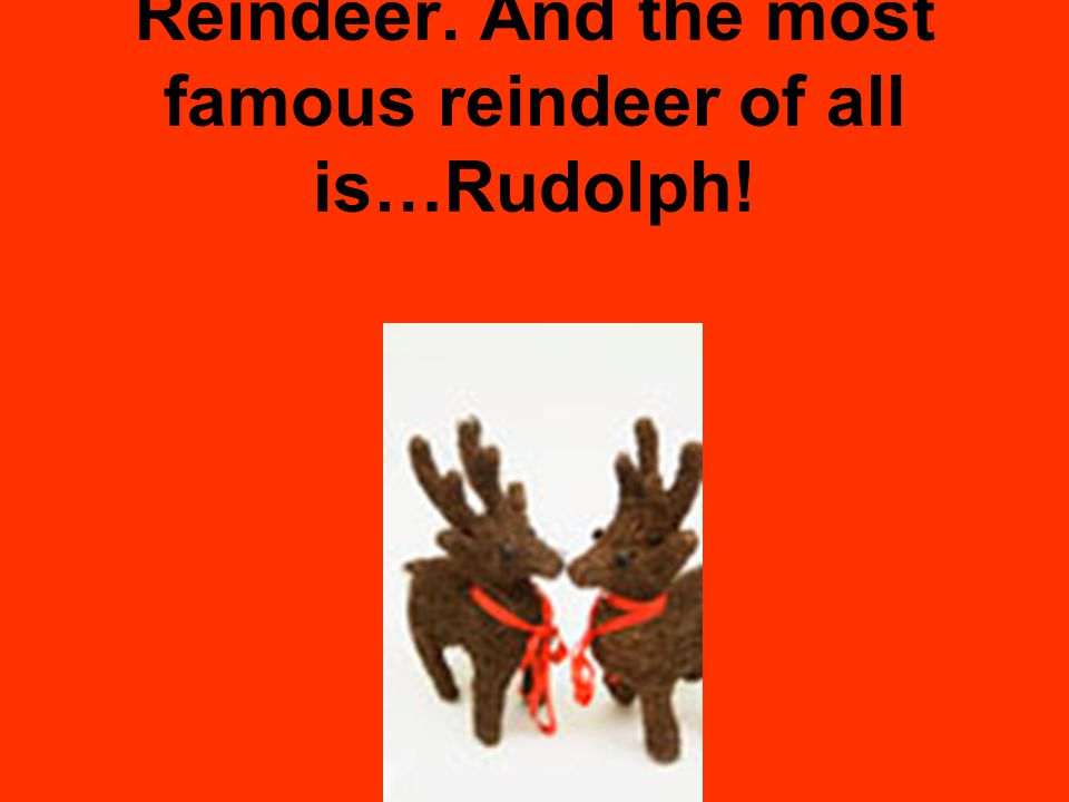 Reindeer. And the most famous reindeer of all is…Rudolph!