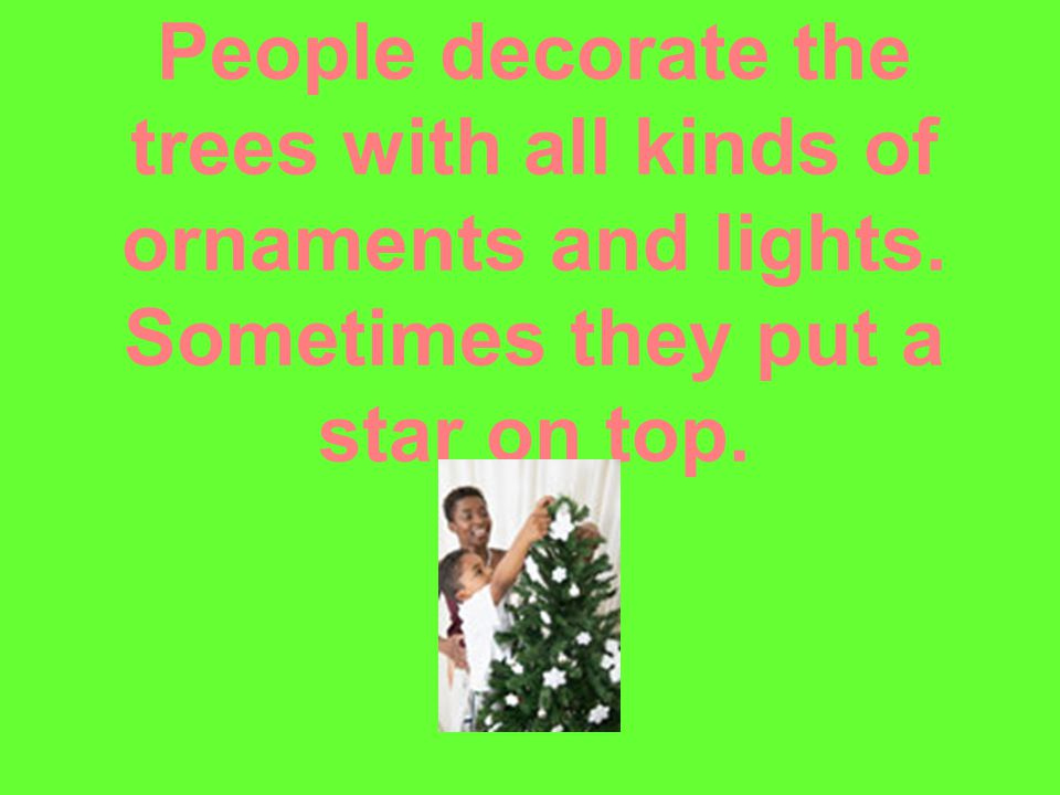 People decorate the trees with all kinds of ornaments and lights