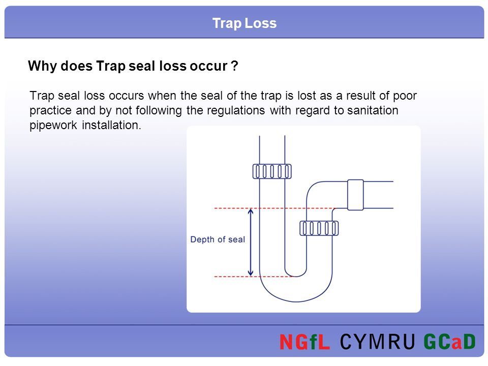 Why does Trap seal loss occur