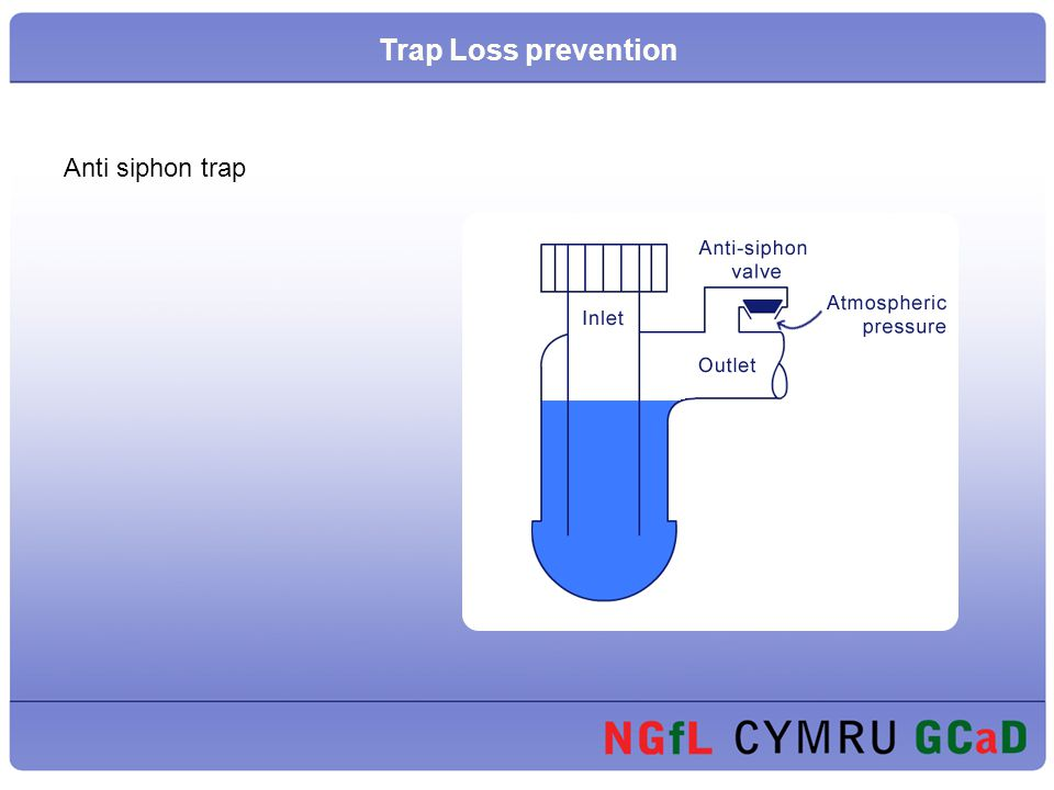 Trap Loss prevention Anti siphon trap