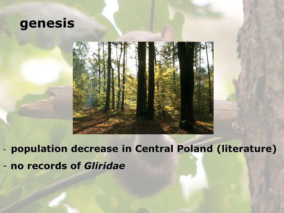 genesis population decrease in Central Poland (literature)