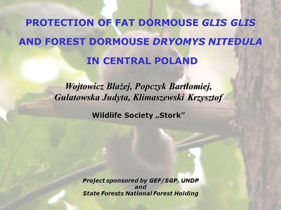 PROTECTION OF FAT DORMOUSE GLIS GLIS