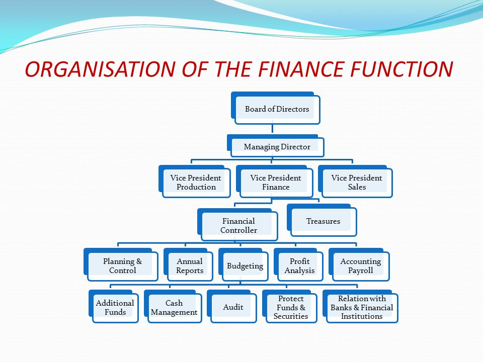 ORGANISATION OF THE FINANCE FUNCTION