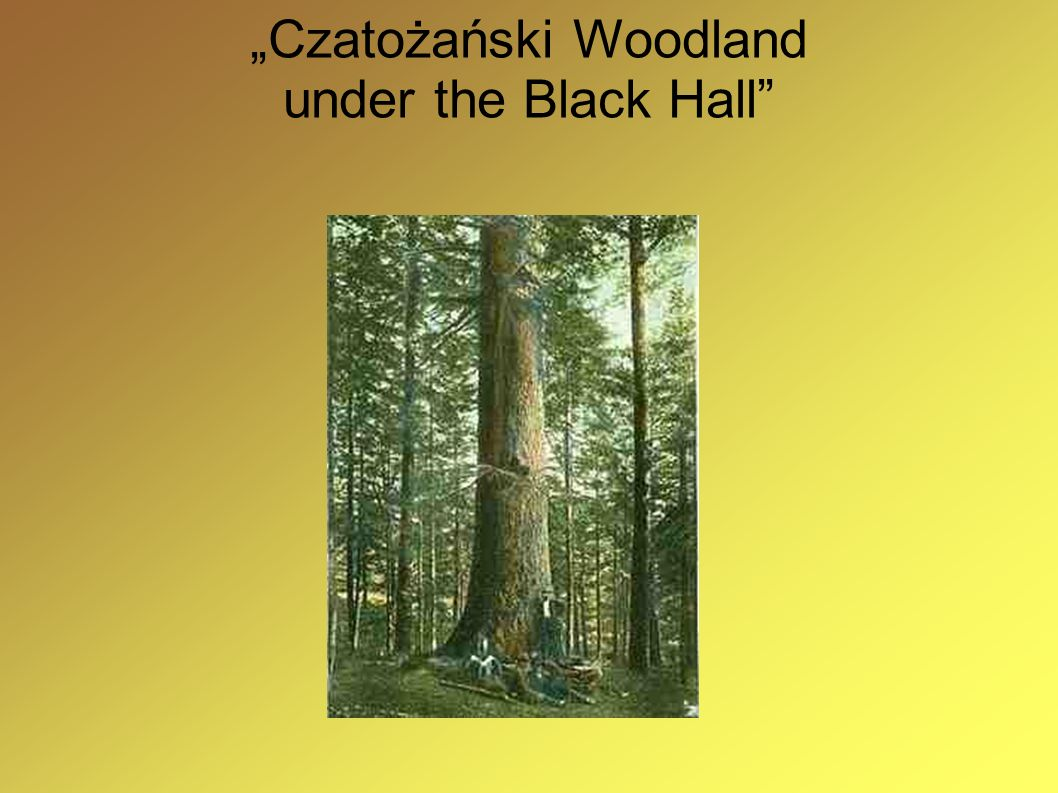 """Czatożański Woodland under the Black Hall"
