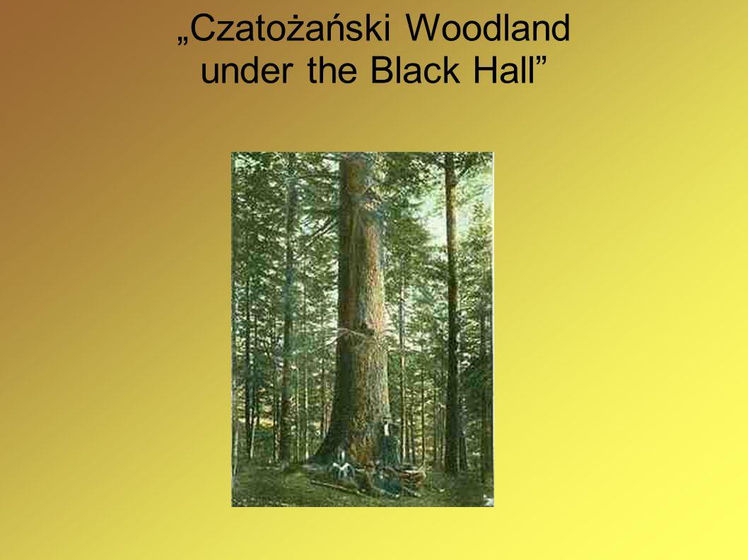 """""""Czatożański Woodland under the Black Hall"""