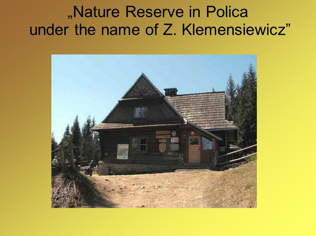 """Nature Reserve in Polica under the name of Z. Klemensiewicz"