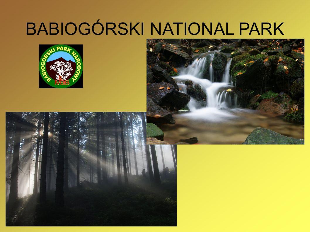 BABIOGÓRSKI NATIONAL PARK