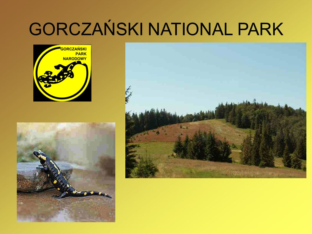 GORCZAŃSKI NATIONAL PARK