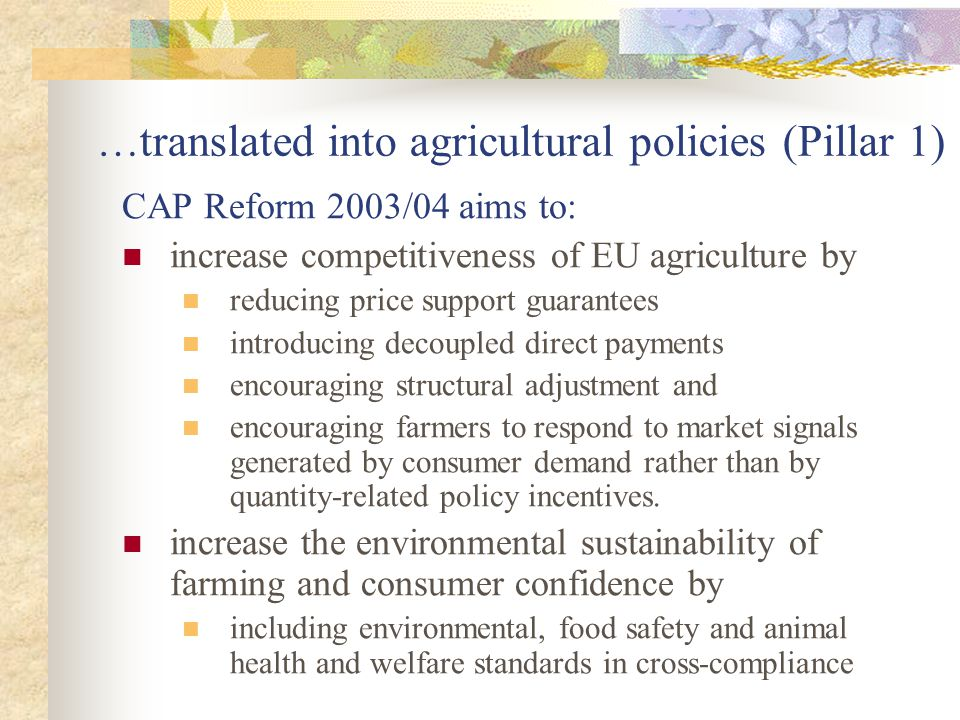 …translated into agricultural policies (Pillar 1)