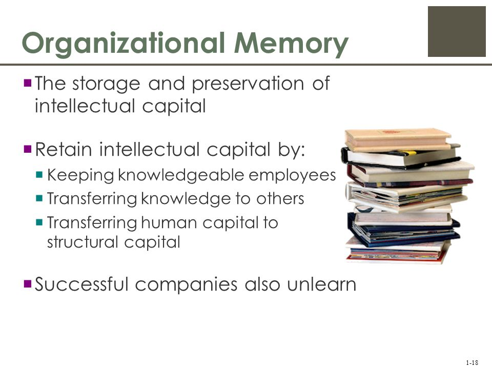 human memory organization Human memories are in a constant state of memory organization depends upon meaning and thus is organized in a way that might have you run into something.