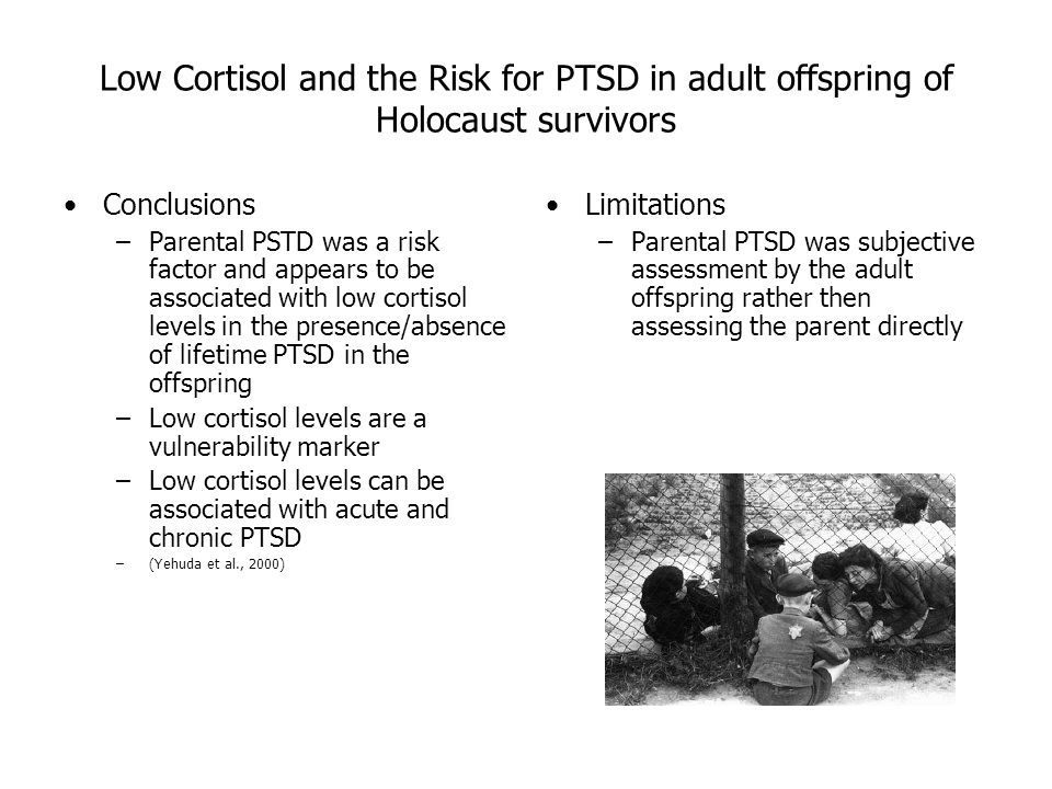 Essay/Term paper: The psychological affects of the holocaust