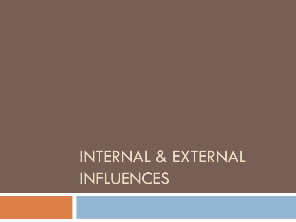 what are internal and external influences