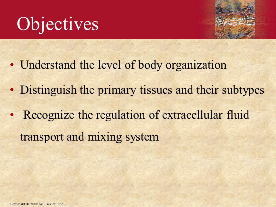 Objectives Understand the level of body organization