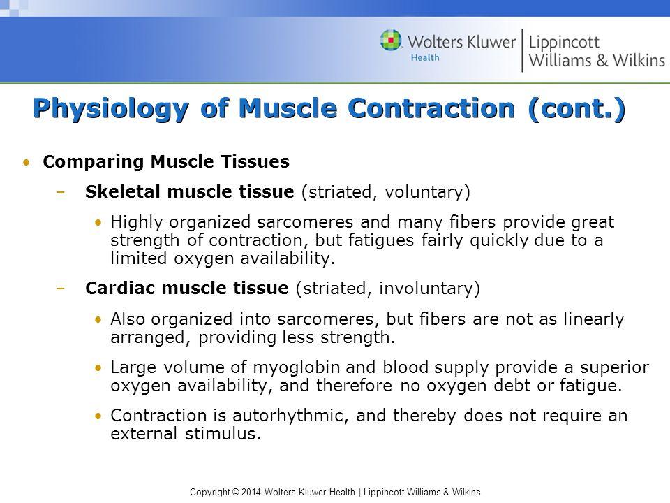 Lujo Anatomy And Physiology Muscle Contraction Adorno - Imágenes de ...