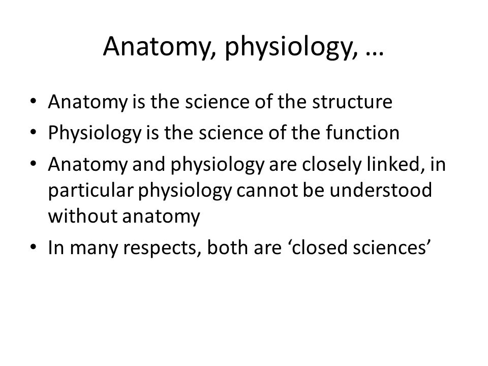 Fantástico Anatomy And Physiology Cell Structure And Function Fotos ...