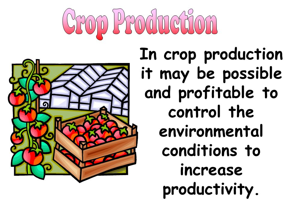 Crop Production In crop production it may be possible and profitable to control the environmental conditions to increase productivity.