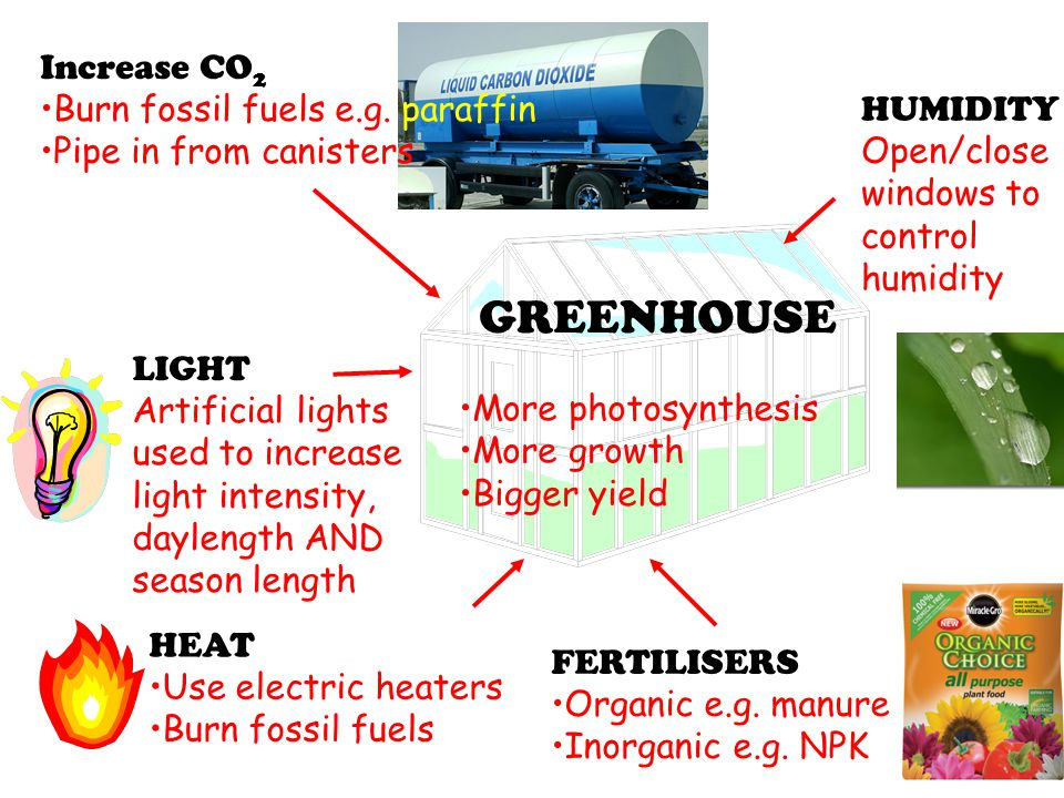 GREENHOUSE Increase CO2 Burn fossil fuels e.g. paraffin