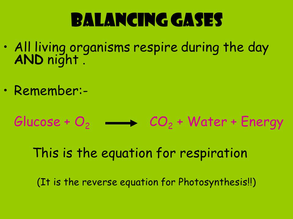 (It is the reverse equation for Photosynthesis!!)