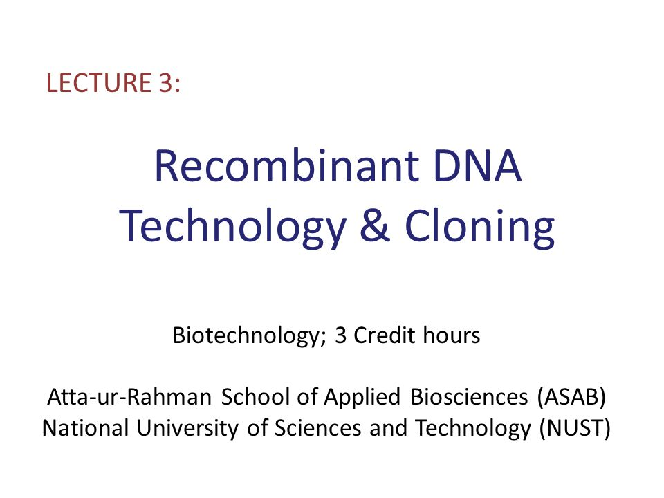 Recombinant DNA Technology Cloning ppt download – Dna Technology Worksheet