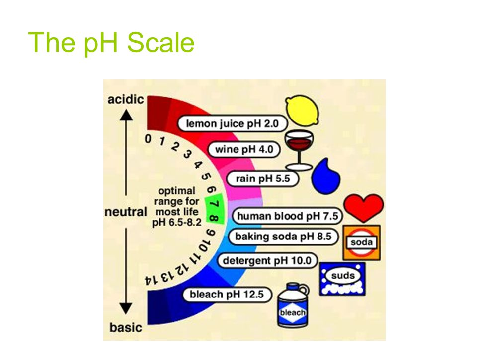 The pH Scale 33