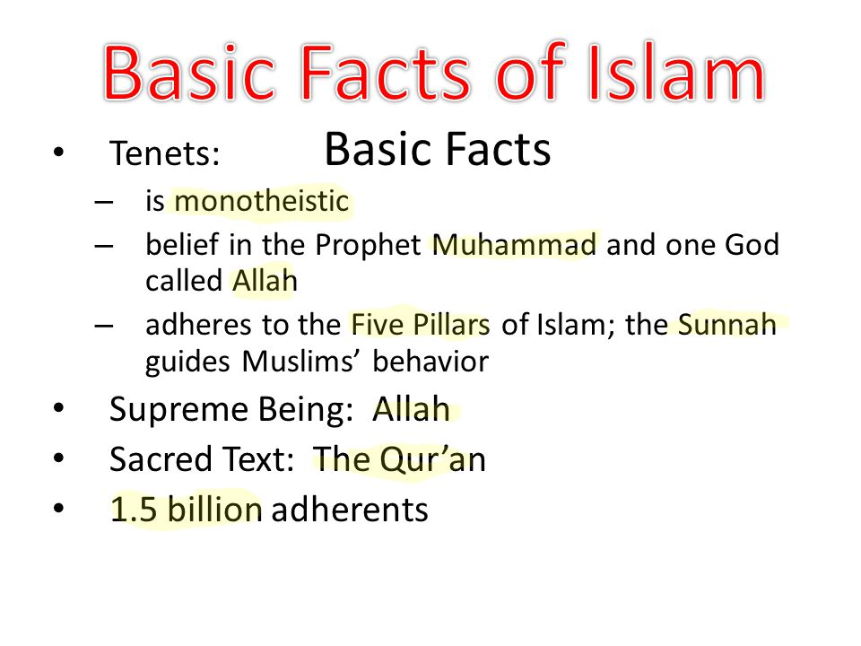 islam and basic beliefs This category is on: beliefs of islam this website is for people of various faiths who seek to understand islam and muslims it contains a lot of brief, yet.