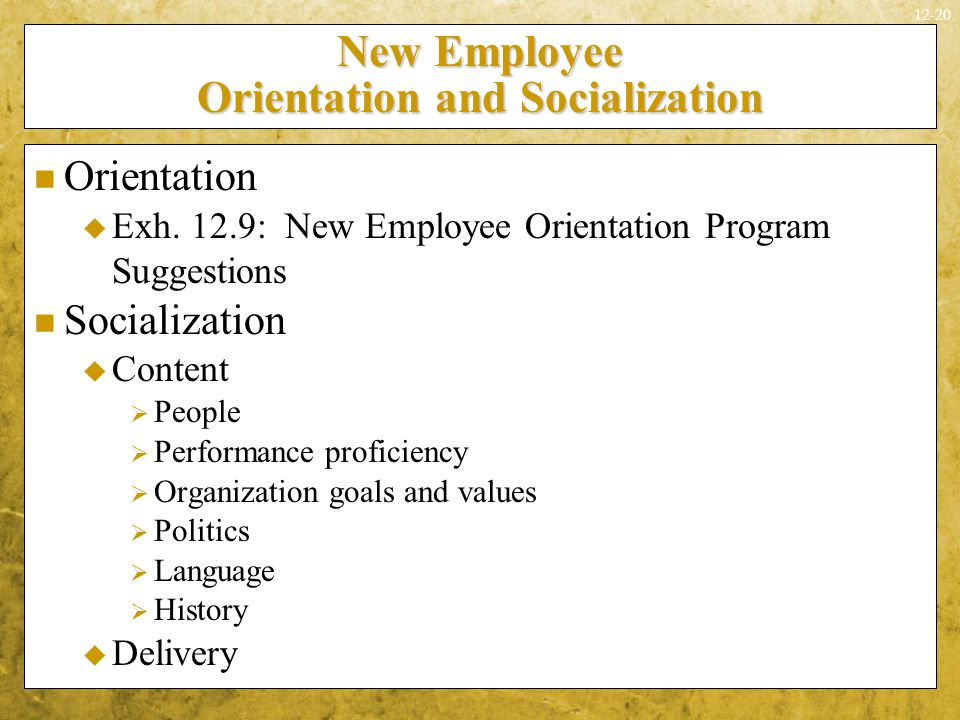 New Employee Orientation and Socialization