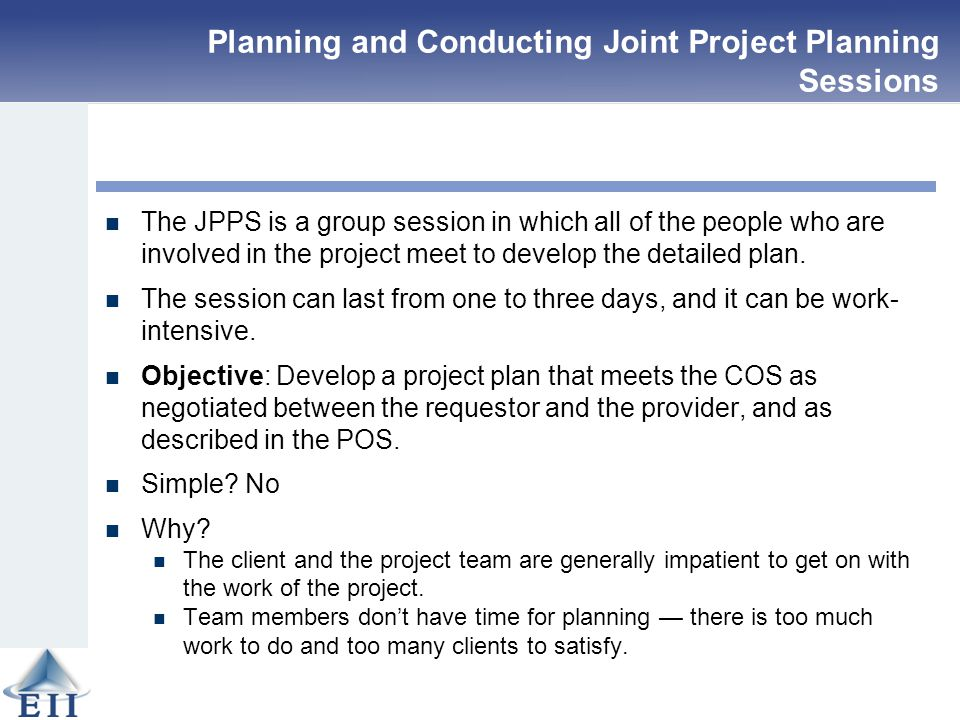 plans to meet team objectives for project