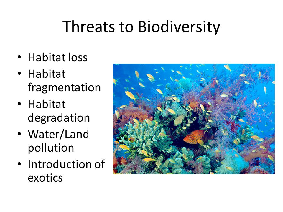 threats to biodiversity Full-text paper (pdf): main threats to marine biodiversity.